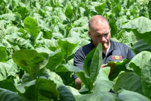 Ken Doerrbecker, Owner of KJD Cigars